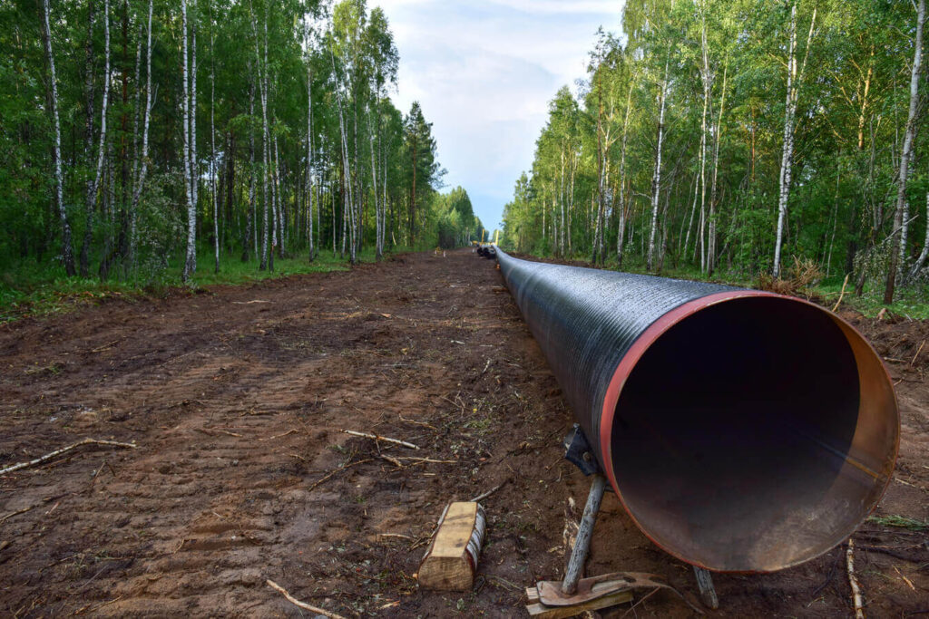 Pipeline of an oil & gas project, under assembling activities in the middle of the forest, but it seems it has been abandoned because of the coronavirus, as explain Nexua Excellence quality in this article, forced to stop all project's activities as assembling, inspection, etc...